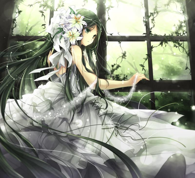 P站画师作品forest green