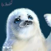 P站画师作品_【厚涂】画了一只小海豹^q^!!(是竖琴海豹呐